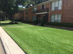 richardson organic lawn fertilization used on green lawn